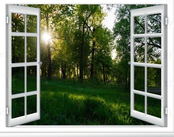Прекрасный вид на восход солнца из окна