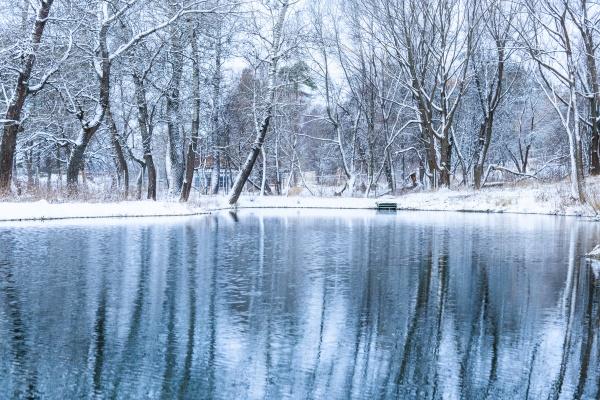 Замороженный пруд зимой