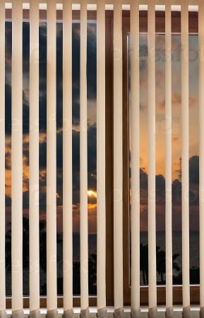Пластиковые жалюзи на окнах