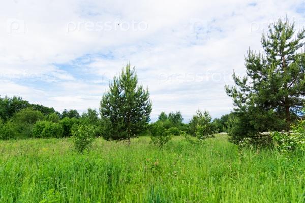 Пейзаж и небо