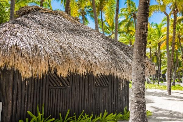 Хижина покрыта пальмовыми листьями