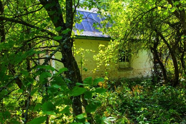 Разрушенные дома. Последствия ядерной катастрофы и вандализма Чернобыле, август 2017 года