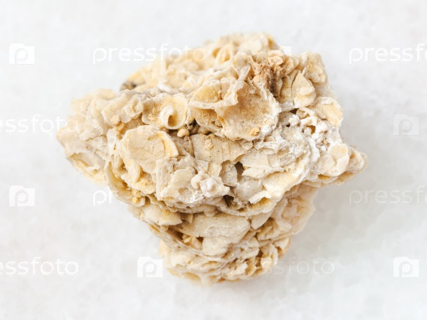 Грубый известняк ракушечник камень на белом