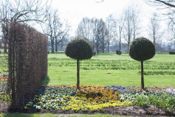 Весенний парк с яркими цветами