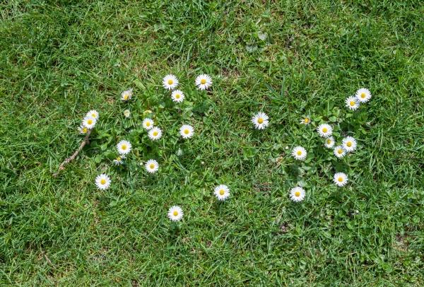 Первая весна