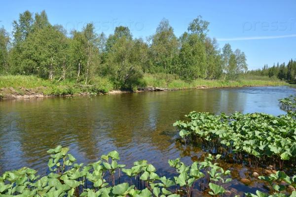 Река Тайга на Северном Урале