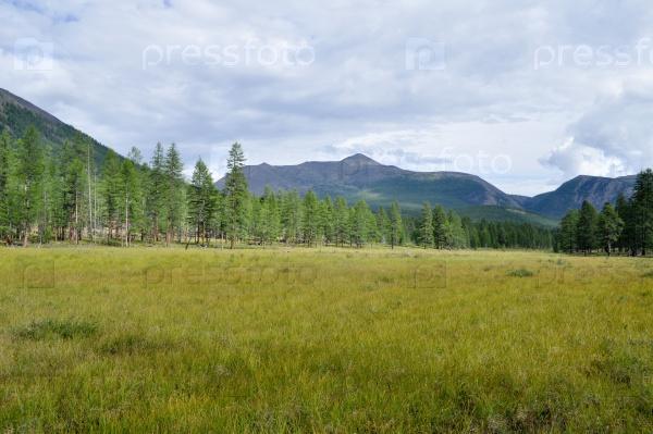 Травяная долина вдоль горного хребта
