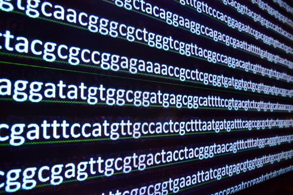Секвенирование ДНК