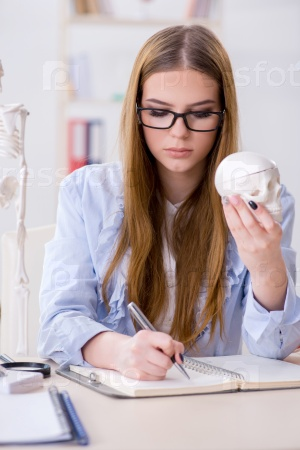 Student sitting in classroom and studying skeleton
