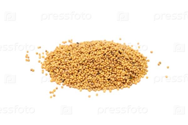 Куча семян горчицы