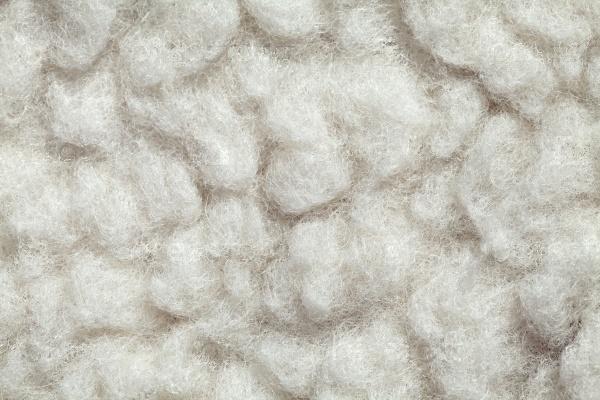 Текстура шерсти