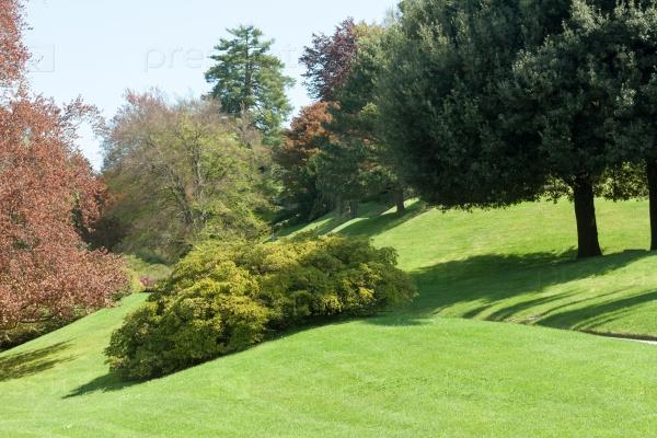 Ботанический сад с зелеными и красными деревьями