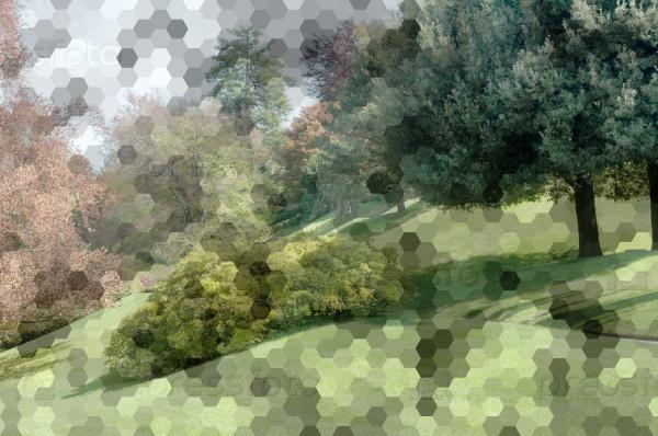 Фон шестиугольников и парка