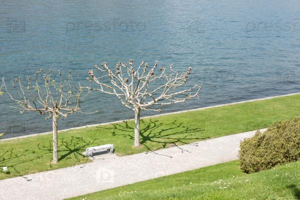 Красивый парк вдоль озера