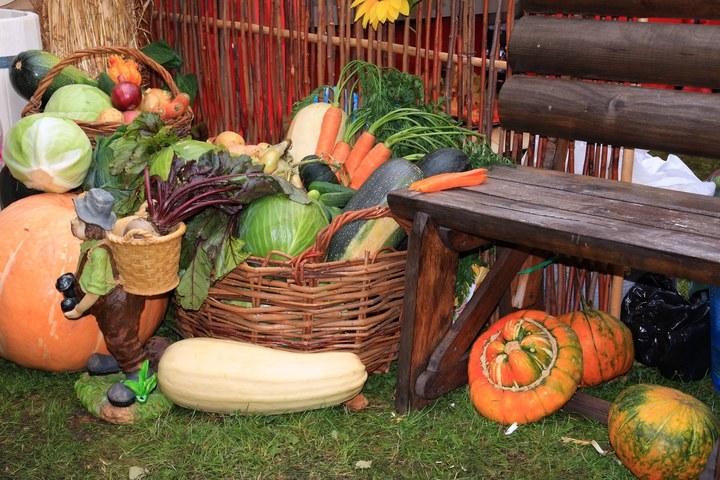 Осенние овощи